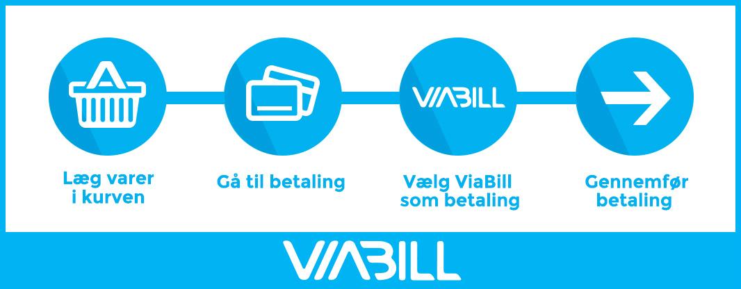 ViaBill Guide